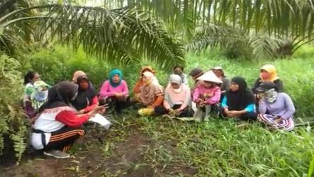 Buruh Perempuan Sawit Kecewa, Tuntut Manajemen PT MAS Aktifkan Kepesertaan BPJS.