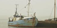Memperjuangkan Hidup Layak, Bagi Pekerja Migran Perikanan dan Pengolahan Makanan Laut